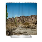 Gila Mountains And Sonoran Desert Shower Curtain