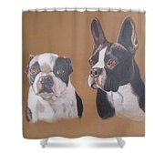 Gilbert And Ellis Shower Curtain