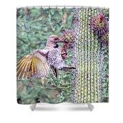 Gilded Flicker 4167 Shower Curtain