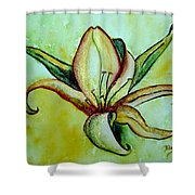 Gilded Lily Shower Curtain