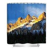 Gilded Ridge Shower Curtain