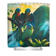 Gimie Dawn 1 - St. Lucia Parrots Shower Curtain