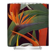 Ginger And Bird Of Paradise Shower Curtain