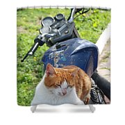 Ginger And White Tabby Cat Sunbathing On A Motorcycle Shower Curtain