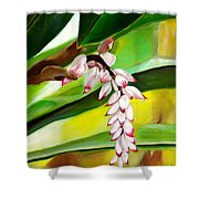 Ginger Bloom-2015 Shower Curtain