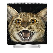 Ginger Cat Eyes Shower Curtain