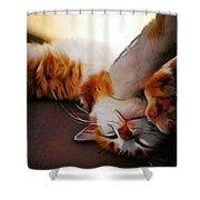 Ginger Feline Shower Curtain