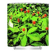Ginger Flowers Shower Curtain