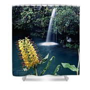 100638-ginger Lily And Hawaiian Waterfall  Shower Curtain