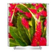 Ginger Plants On Kauai Shower Curtain