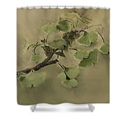 Gingko Branch Shower Curtain