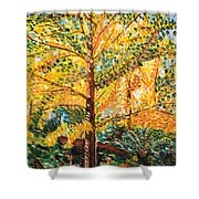 Gingko Tree Shower Curtain