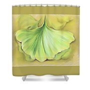 Ginkgo On The Cusp Of Autumn Shower Curtain