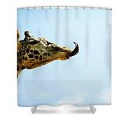 Giraffe And Tongue Shower Curtain