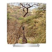 Giraffe Camouflage Shower Curtain