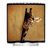 Giraffe Hiding  Shower Curtain