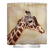 Giraffe Portrait With Texture Shower Curtain