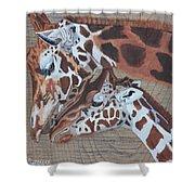 Giraffe Love Shower Curtain