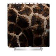 Giraffe Patterns  Shower Curtain
