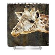 Giraffe Up Close Shower Curtain