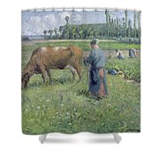 Girl Tending A Cow In Pasture Shower Curtain by Camille Pissarro