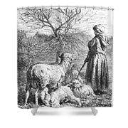 Girl Tending Sheep Shower Curtain
