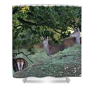 Girls On A Hill Shower Curtain