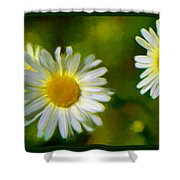 Give Me Daisy In Color Shower Curtain