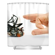 Give Pests The Flick Shower Curtain