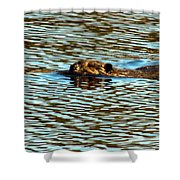 A Swim By Shower Curtain