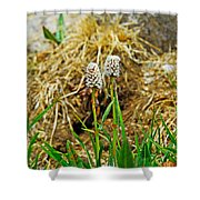 Glacial Wildflowers Shower Curtain