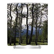 Glacier National Park Green Trees Mountains Shower Curtain