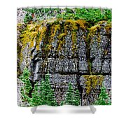Glacier Np Moss Shower Curtain