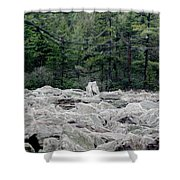 Glacier Rock 2 Shower Curtain