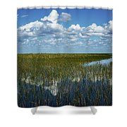 Glade's Glass Shower Curtain