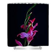 Gladiola Opening Shower Curtain