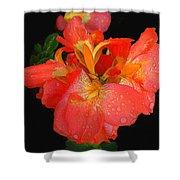 Gladiolus Bloom - Digital Art Shower Curtain