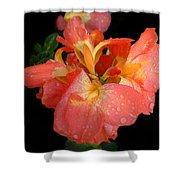 Gladiolus Bloom Shower Curtain