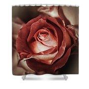 Glamorous Rose Shower Curtain