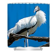 Glamorous Wood Stork Shower Curtain