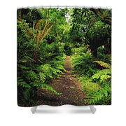 Glanleam, Co Kerry, Ireland Pathway Shower Curtain