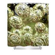 Glass Bubbles Shower Curtain