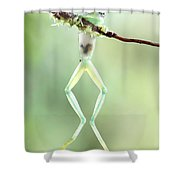 Glass Frog Shower Curtain