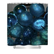 Glass Grapes Shower Curtain