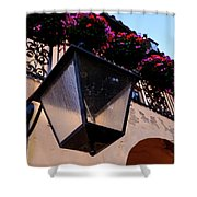Glass Light Housing With Red Flower Architecture In Saint August Shower Curtain