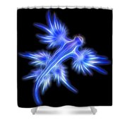 Glaucus Atlanticus 1 Shower Curtain