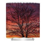 Glen Iris Sunrise Shower Curtain