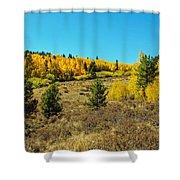 Glen Of Color Shower Curtain