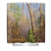Glenmoor Woods, Sunset Shower Curtain