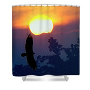 Gliding By The Sun Shower Curtain